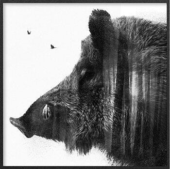 Vildsvin porträtt