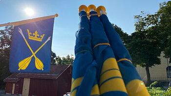 Fasadflagga - Dalarnas landskapsvapen Dalpilarna