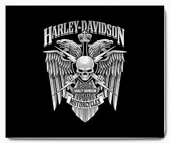 Harley Davidson motorcykel 15 - musmatta
