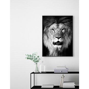 B&W Lion - Poster