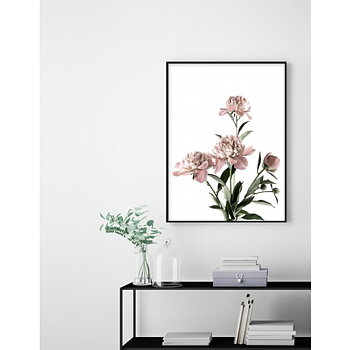 Pink Peony - Poster