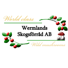 Torkad skogssvamp, Wermlands Skogsförråd, 1,7 kg