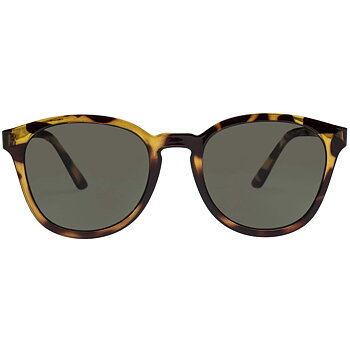 Renegade - Syrup Tortoise [Le Specs]