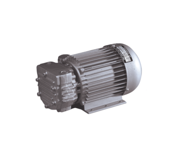Trockenlaufende Drehschieber-Vakuumpumpe Mil's Arica 6VK 0,25 kW/1450 rpm 1-ph