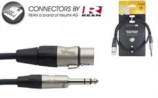 1M/3Ft Audio Ster.Plg-Xlrf Dl