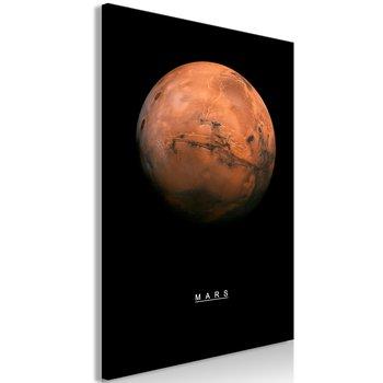 Tavla - Canvastavla - Mars Vertical