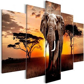 Tavla - Canvastavla - Wandering Elephant (5 delar) Wide