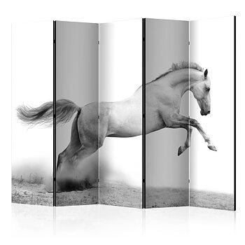Rumsavdelare - White gallop II
