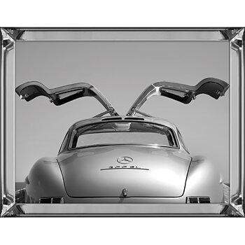 Tavla Mercedes Måsvingar 60x80cm
