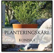 Planteringskärl koniska