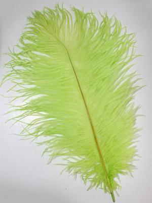 FJÄDER - 30 cm | limegrön