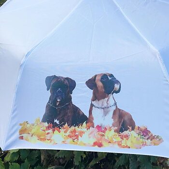 Umbrella with your image