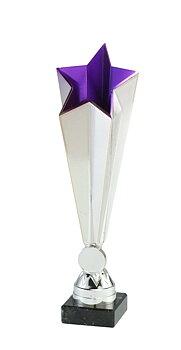 Silverpokal Blue Star, 3 olika storlekar - Inklusive jetong och skylt med text
