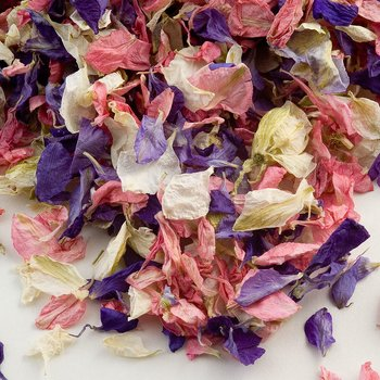 Delphinium Petals - Mixed Colours