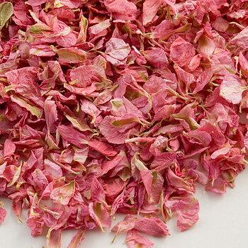 Delphinium Petals - Pink