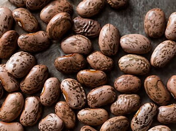 MASHAMBA Pinto Beans 1kg
