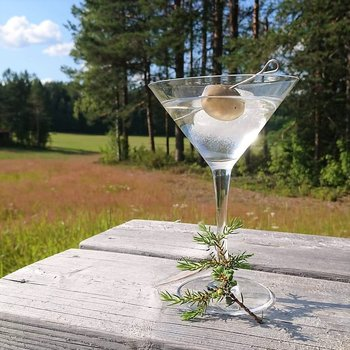 Cocktailpinne och tapaspinne