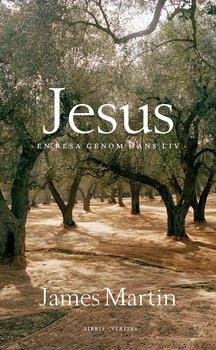 Jesus - en resa genom hans liv - James Martin