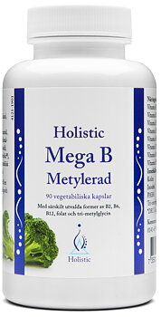 Mega B Metylerad