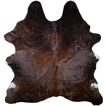 Kohud brun 2