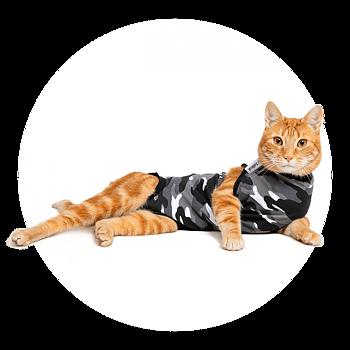 Återhämtnings body  / medicinsk body  / skydds body / operations body till katt ( svart  ) från 329kr