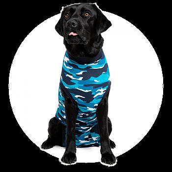 Återhämtningsbody  / medicinskbody  / skyddsbody / operationsbody till hund ( blå  ) från 329kr