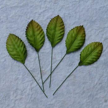 Gröna, Blad, 10st, Mullbärspapper,