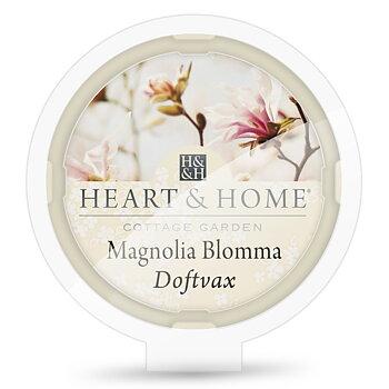 Magnolia Doftvax