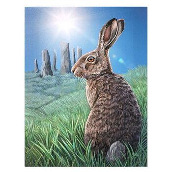 Hare Canvastavla av Lisa Parker