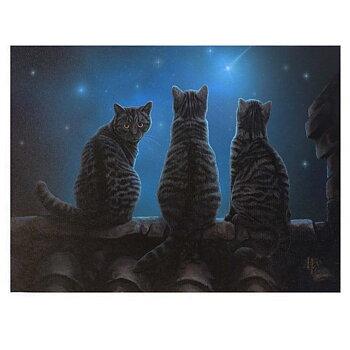 Katter Canvastavla av Lisa Parker