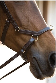 Rambo Micklem Multibridle stl Large Horse