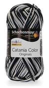 Catania Color - Zebra