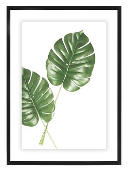 Poster Philodendron By Mujo
