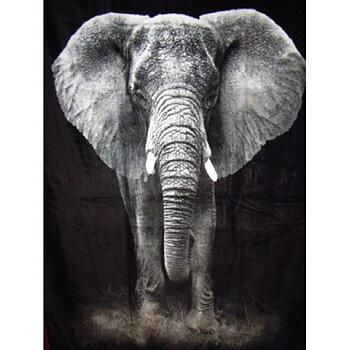 Badlakan Elefant