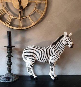 Dekoration - Zebra