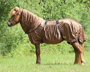 Eksemtäcke Islandshäst