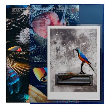 Erik Berglin: The Bird Project 2006-2017 [Special Ed - Blue]
