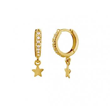 Sparkling Star  hoop pris/st