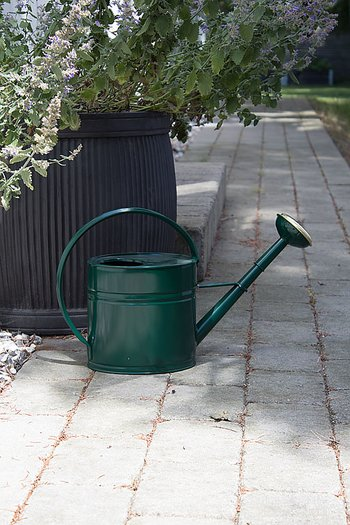GardenMind Watering Can Dark Green 4L