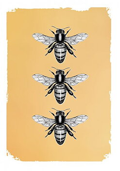 Drawn in gold : Bees