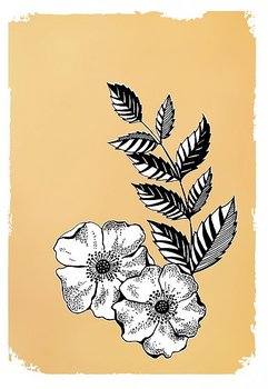 Drawn in gold : Dog rose flower