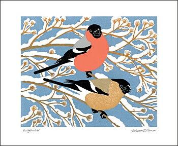 Robert Gillmor : Bullfinches - Kort med kuvert