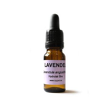 Lavendelhydrolat TP 10ml