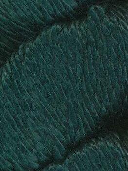 Cozy Alpaca Chunky 523 Hunter Green