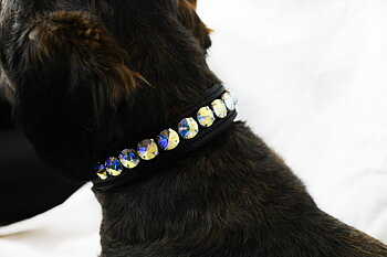 Exclusive Dog Collar Swarovski