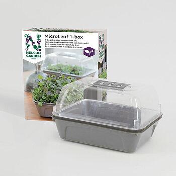 Micro Leaf box